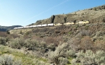 UP 5163, 4351, and 3806 Northbound Near Coleman Point and the Deschutes River Canyon
